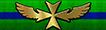 Starfleet Pilot's Cross