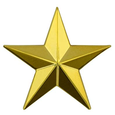 Gold Mission Star